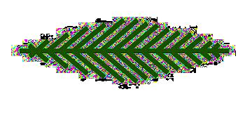 foglia logo